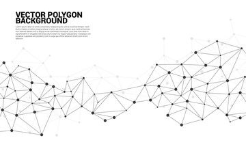 Network Connecting dot polygon background : Concept of Network, Business, Connecting, Molecule, Data, Chemical Wall mural