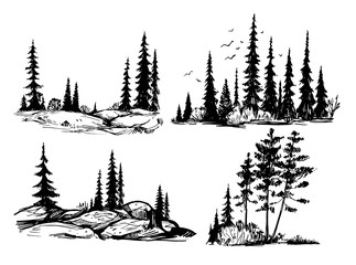 Hand drawn sketch of forest. Silhouettes of trees