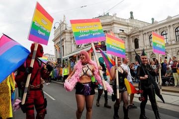 Revellers participate in Regenbogenparade gay pride parade in Vienna