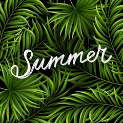 Summer background with jungle plants