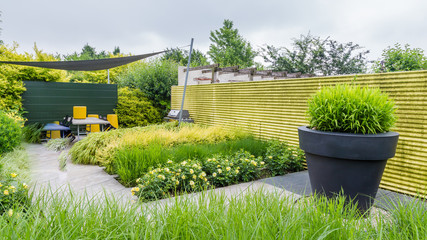 Garden design with a green wall and yellow accents