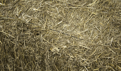 Dry straw for animals