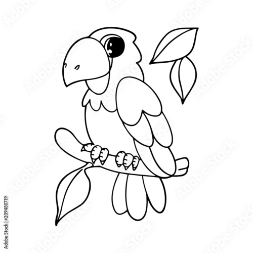 Parrot Cartoon Images Black And White Impremedia Net