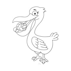 Pelican cartoon illustration isolated on white background for children color book