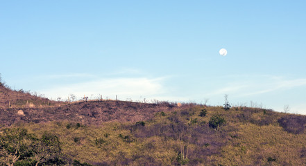 Landscape with moon lit in the light day