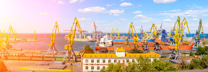 Panorama of the port cranes ships containers