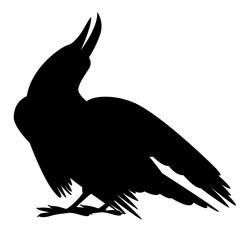 bird crow vector illustration black silhouette profile