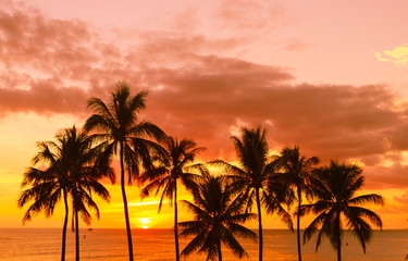 Tropical beach sunset background.