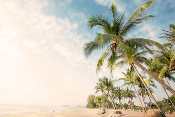 Wall Mural - Vintage nature background - Landscape of coconut palm tree on tropical beach in summer. Summer background concept. retro instagram filter effect