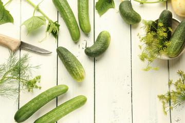 verschiedene frische Gurken Einlegegurken Salatgurken Schmorgurken Dill Dillblüte Messer Freiraum