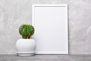 Small cactus in flower pot and mock-up of white frame with copy space for poster