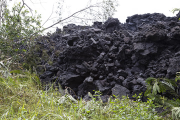Close-up of a lava flow of the volcano Kilauea on Hawaii destroying the vegetation