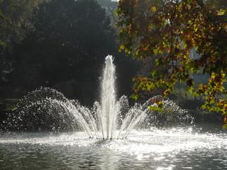 Teich an der Bockenheimer Anlage in Frankfurt