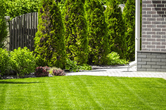 Beautiful evenly trimmed lawn in the backyard of a private house.