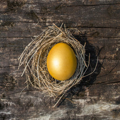 Golden egg opportunity, retirement planning, business investment and life assurance concept of wealth and a chance to be rich