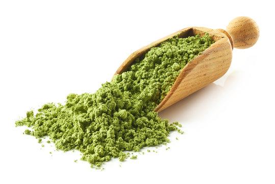 Scoop of green matcha tea powder