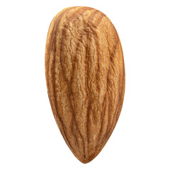 One Almond isolated closeup without shell as package design element on white background. Nut macro collection