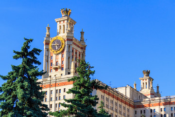 Tower with clock of Lomonosov Moscow State University (MSU) against background of green spruce and blue sky in sunny summer evening