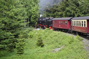 Dampfzug zum Brocken im Harz