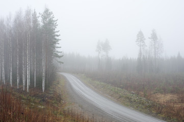 Dirt road winding through foggy and rainy autumn landscape.