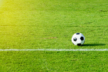 Green field at the stadium with sun and soccer balls and white lines.