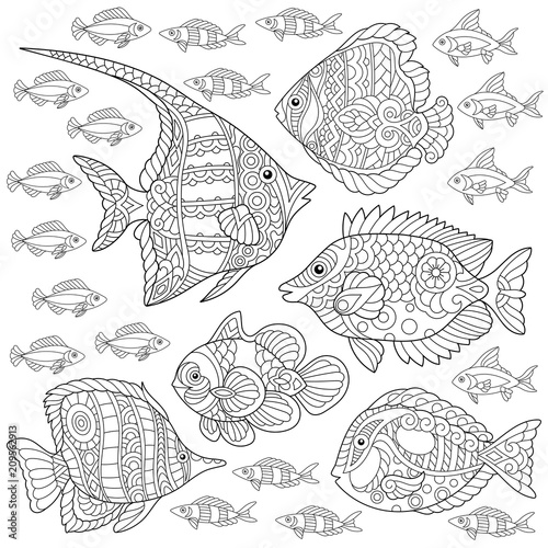 Collection Of Tropical Fishes Coloring Page Colouring Picture Adult Book Idea