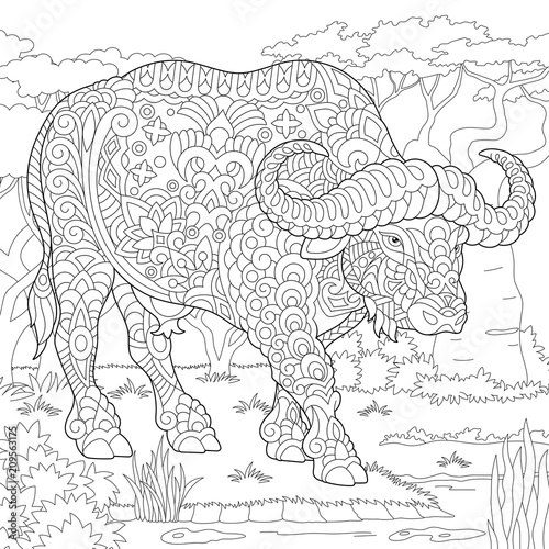Buffalo. Bull. Coloring Page. Colouring picture. Adult ...