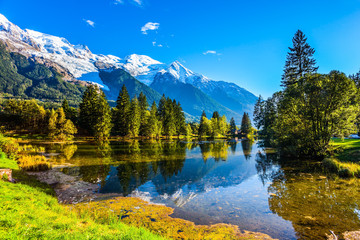 The lake reflects the forest