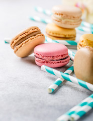 French assorted macarons on light gray concrete background. Holidays food concept. Copy space.