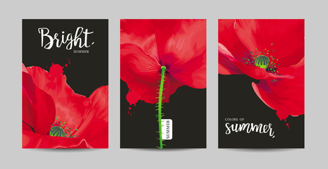 Luxurious bright red vector Poppy flowers paintings on black background set