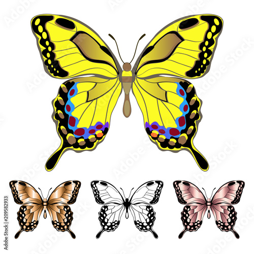 Set Of Colorful Butterflies Stock Image And Royalty Free Vector