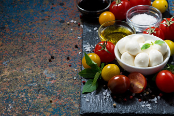 mozzarella, fresh vegetables and spices and dark background for text, horizontal