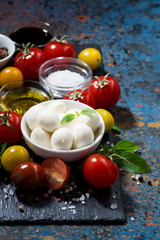 mozzarella, fresh vegetables and spices and dark background