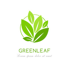 Green leaves logo. Vector graphic symbol.