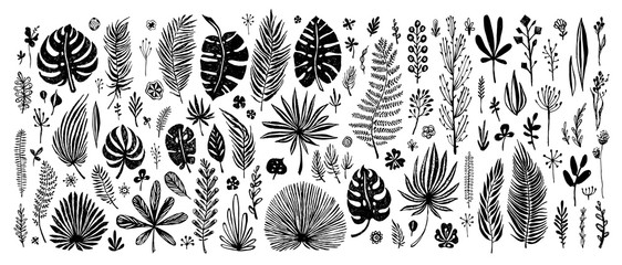 big Set of black doodle elements. exotic tropical leaves on a white background. Vector botanical illustration. Great design elements for congratulation cards, banners and others Wall mural