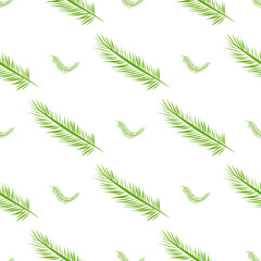 Seamless abstract feather illustrations background. Backdrop, wallpaper, design & graphic.