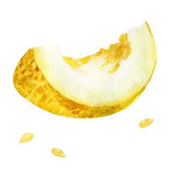 Watercolor illustration. Slice of melon.