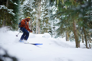 man skier rides freeride on powder snow in forest