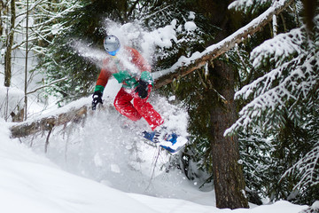 a guy a snowboarder is riding a log in forest