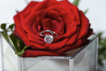 Glass box with red rose and beautiful engagement ring, closeup