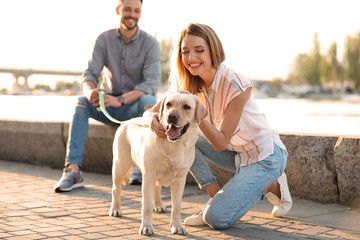 Cute yellow labrador retriever with owners outdoors