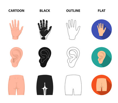 Back of the person, mouth, hand, ear. Part of the body set collection icons in cartoon,black,outline,flat style vector symbol stock illustration web.