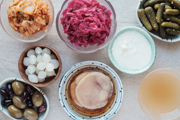 variety of fermented probiotic foods for gut health
