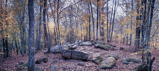 Дольмен в лесу, в долине реки Джанет. Краснодарский край, Россия.