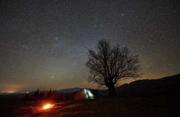 Bright campfire burning near tourist illuminated tent. Night camping in mountains under beautiful starry sky. Silhouette of big tree and distant hills on background. Tourism and traveling concept