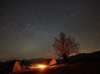 Incredible night camping site view. Bright bonfire burning between two tourist tents under beautiful dark starry sky on big tree and distant mountain range background. Tourism and traveling concept.