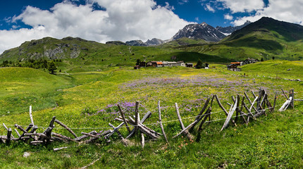 Wall Mural - idyllic mountain landscape in the summertime with a traditional wooden fence in the foreground