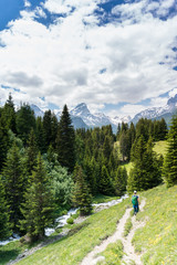 Wall Mural - young woman hiking along a pristine mountain stream in a pine forest