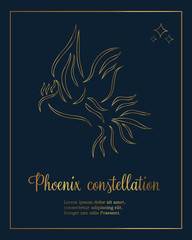 Phoenix golden constellation in the night sky