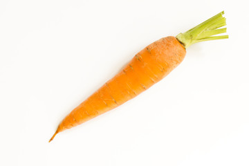 Fresh, sweet carrots  on white background